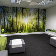 Wall Graphics   Projects   CSS Signs Bold Colors, Colours, Window Graphics, Nature Scenes, Photographic Prints, Environment, Signs, Wall, Projects