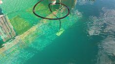 Pulizia del fondo di una piscina biologica.