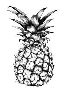 pineapple illustration by ini neumann | black and white | amazing pen detail | repped by UPPERorange in Berlin