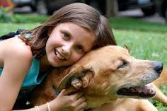 We have six fantastic tips to help your children overcome their fear of dogs by guest author Doug. Learn how he helped his girls with their fear of dogs. Large Dog Breeds, Best Dog Breeds, Best Dogs, Pet Breeds, David E Victoria Beckham, Fear Of Dogs, Pet Day, Chinchillas, Therapy Dogs