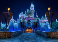 Disneyland At Christmas Time!