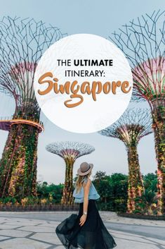 If you're looking for the perfect 3 day itinerary for Singapore, I put together a guide from my trip! Despite flying through Singapore at least a dozen times in Singapore Travel Tips, Singapore Itinerary, Singapore Sling, Visit Singapore, Singapore Singapore, Kuala Lumpur, Phuket, Lombok, Henderson Waves