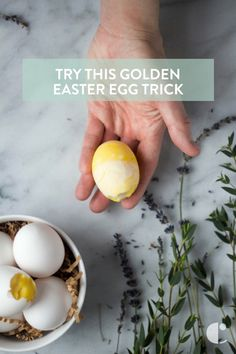 Golden eggs trick that scrambles your eggs before you even cook them! You've heard about the goose that laid the golden egg, but what about the chicken?