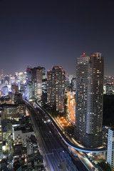 Tokyo cityscape at night New York Skyline, Night, Travel, Viajes, Destinations, Traveling, Trips