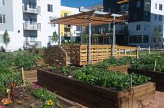An edible garden at a low-income, senior assisted-living facility in Colorado. Courtesy of CoCal Landscape.