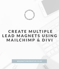 How to create multiple MailChimp lead magnets in Wordpress Lead Magnet, Email Marketing Campaign, Magnets, Wordpress, Web Design, Knowledge, Layout, How To Get, Website