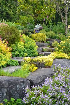 the garden of Peggy and Bill Fox has a north-facing Puget Sound site Garden Design Images, Garden Landscape Design, Green Landscape, Garden Steps, Garden Paths, Garden Art, Love Garden, Shade Garden, Cactus