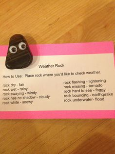 Weather rock. School market day