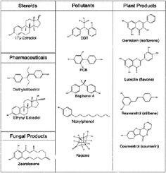 Endocrine Disruptors: Characteristics Endocrine Disruptors, Homestead, Bullet Journal, Words, Heart, Horse, Hearts