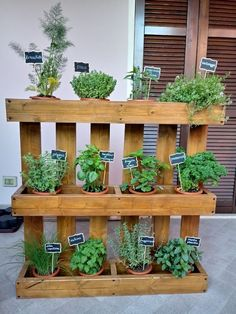 24 Awesome Vertical Garden Design Ideas And Remodel. If you are looking for Vertical Garden Design Ideas And Remodel, You come to the right place. Here are the Vertical Garden Design Ideas And Remode.
