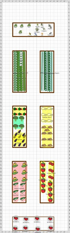 Garden Plan Showing the New Fruit and Nut trees that have recently