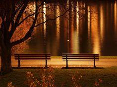 Beautiful light.