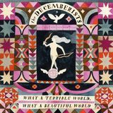 What a Terrible World, What a Beautiful World [CD]