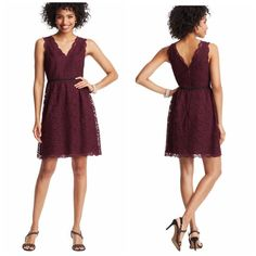 Loft Burgundy Scalloped Lace Dress SO cute and perfect dressed up or down! Brand new with $98 tag. Beautiful scalloped neck detail. No trades!! 0421650gwf LOFT Dresses