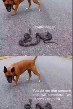 You do me one concern