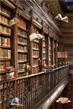 Magnetpinnwand Bibliothek 60x40 cm inkl. 8 Magnete fliegende B�cher