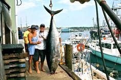 Kusler Yachts Fishing Team Gloucester Bluefin