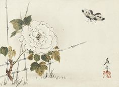 https://flic.kr/p/eeQ5gu | Shibata Zeshin | A small album bound in orihon, butterfly hovering over a white peony flower growing from behind a bamboo fence, signed in black lacquer Zeshin with seal Koma. 1807-1891, late 19th century