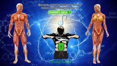 Как мы лечим болезни? #Premilife дает #энергию #ЧеловеческомуТелу, которая повышает его шансы на одержаниепобеды над #болезнью (какой болезнью? Их более 700!) - средства - #гомеопатические лекарственные препараты Quantum Physics, Special Relativity, Theory Of Relativity, Stephen Hawking, Einstein, Elementary Particle, Medicine Quotes, Nobel Prize In Physics, Human Body