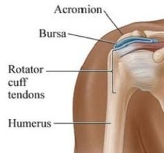 Rotator Cuff Exercises - Ways to Strengthen your Shoulder After an Injury