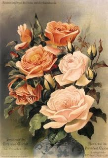 Antique Prints Antique-Passion, Vintage, Retro ... and various crafts: My weakness ... roses ...