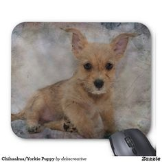 Chihuahua/Yorkie Puppy Mouse Pad