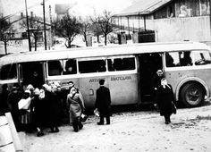 Prestup z električiek na autobusy v Gaštanovom hájiku pri továrni Dynamit - Nobel Bratislava, Budapest, Racing, Retro, Times, Inspiration, Biblical Inspiration, Auto Racing, Lace