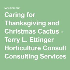 Caring for Thanksgiving and Christmas Cactus - Terry L. Ettinger Horticulture Consulting Services Question of the Week
