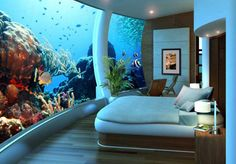 Sweet hotel room with wall to wall fish tank in Dubai #travel