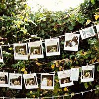 Приглашения на свадьбу, свадебные таблички и открытки | 8733 Фото идеи | Страница 22