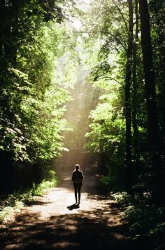 That's me walking down the path toward the light and enjoying the forest and the sounds and feeling stress free.....I can only hope