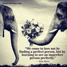 We come to love not by finding a perfect person but by learning to see an imperfect person perfectly.... <3
