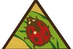 Brownie: Bugs Badge