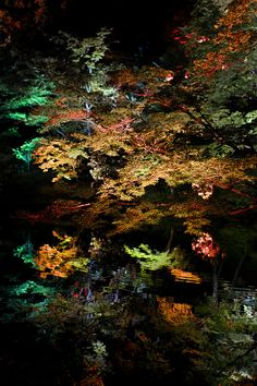 """""""Night Pond"""" by Azul Obscura"""
