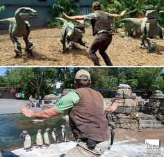 "ryan404000: """" Zookeepers are Recreating Chris Pratt's Moves in JURASSIC WORLD "" I'm glad this exists """
