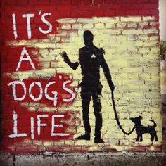 It'a dog's Life  #estonia #tallinn #dog #graffiti #oldtown #travel #europe #viro #itsadogslife #quotes #quote Estonia Tallinn, Travel Europe, Dog Life, Old Town, Graffiti, The Incredibles, Dogs, Quotes, Old City