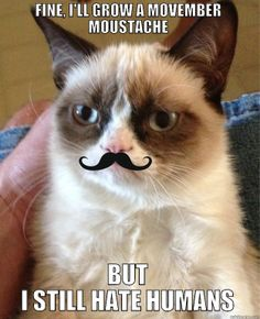 Some Movember Moustache Memes For A Good Cause, Good Laugh