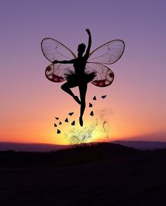 ballet, beautiful pictures, butterflies, butterfly, fairy, photography