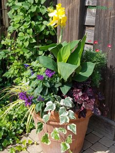 Full to the brim. This container planting has a great variety of plants.