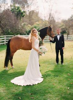 horse with bride and groom