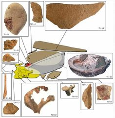 100000-year-old ochre toolkit and workshop found in the Blombos Cave. An…