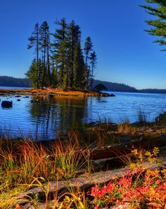 Waldo Lake,Oregon, USA, Wow! Beautiful picture! This is one of our family's favorite places to camp! Really nice place to hike around too. :)