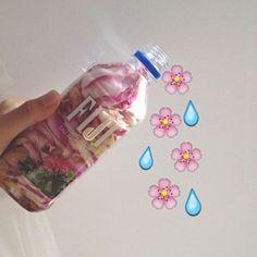 Flower petals in Fiji water bottle