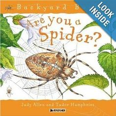 Are You a Spider? // Non-fiction for Spider Unit