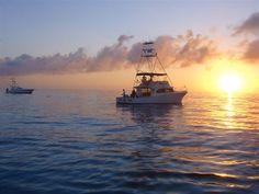 Deep Sea Fishing... I so want to do it again.