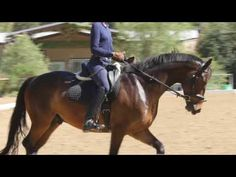 Why do you think is it essential to consider the proper suggestions in acquiring the equestrian boots to be utilized with or without any horseback riding competitors? Dressage Videos, Dressage Horses, Equestrian Outfits, Equestrian Style, Horse Exercises, Types Of Horses, Horse Training, Training Tips, Horseback Riding