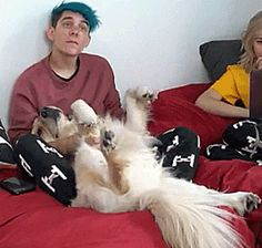 I don't know what's cuter, Chica or Ethan