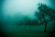A dark morning... by AnneCecile Graphic