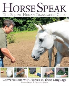 Horse Speak: An Equine-Human Translation Guide: Conversations with Horses in Their Language by Sharon Wilsie,Gretchen Vogel, Horse Training Tips, Horse Tips, Dog Training, Horse And Human, Horse Books, Types Of Horses, Equestrian Outfits, Equestrian Style, Equestrian Fashion