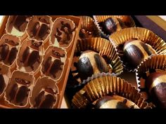 How to make COCOA BEETLES from Coraline! Feast of Fiction S4 Ep25 - YouTube